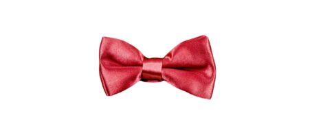 papion-roz-elegant-casual-scaled-1.jpg